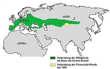 Verbreitung der Wilfpferde | Tierarztpraxis-Hanau.de