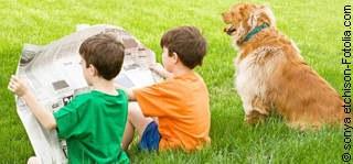 Tierinfo - Tierarztpraxis Hanau