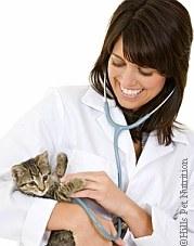 Aktion Tiergesundheit | Tierarztpraxis-Hanau.de