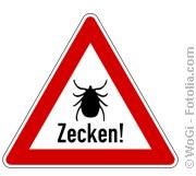 Zeckensaison eröffnet | Tierarztpraxis-Hanau.de
