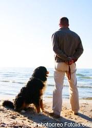 Leishmaniose-Sorgen nach dem Urlaub -> Testen | Tierarztpraxis-Hanau.de