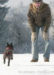 Spiele im Schnee | Tierarztpraxis-Hanau.de