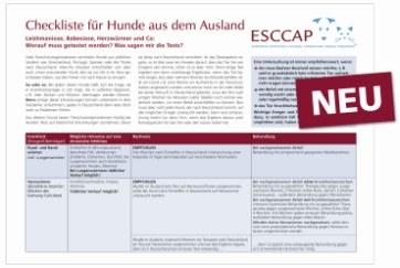 Checkliste für Hunde aus dem Ausland | Tierarztpraxis-Hanau.de