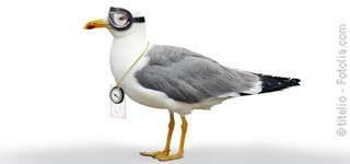 Sitemap - Tierarztpraxis Hanau